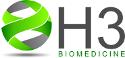 H3 Logo